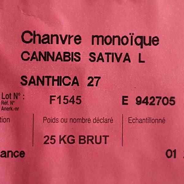Santhica 27 hemp seeds
